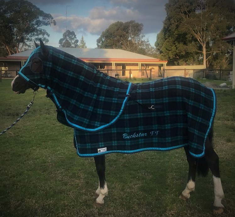 Kersey Wool Rug Winter Collection Camelot Horse Rugs