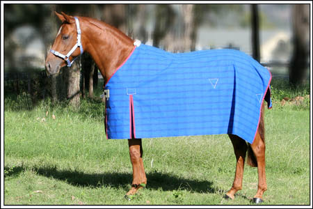 Unlined Canvas Rug Winter Collection Camelot Horse Rugs