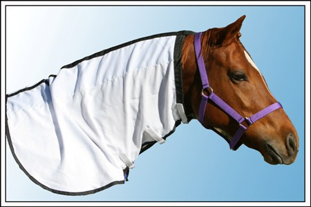 Flag Neck  Rug Only